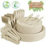 Compostable Paper Plates 250 Pcs Disposable Dinnerware Set Heavy-Duty Quality Natural Bagasse Made of Sugar Cane Fibers Biodegradable Plates and Cutlery for Party, BBQ, Picnic(Natural)  byGezond