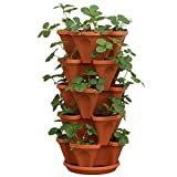 5-Tier Strawberry and Herb Garden Planter - Stackable Gardening Pots with 10 Inch Saucer (Terra-Cotta)  byMr. Stacky